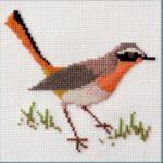 Mollink Cape Robin - Chat cross stitch kit