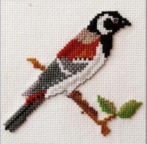 Mollink Cape Sparrow cross stitch kit