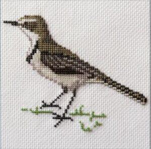 Mollink Cape Wagtail cross stitch kit
