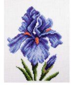 Irises Printed Aida cross stitch pattern