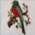 Mollink Narina Trogon cross stitch kit