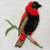Mollink Southern Red Bishop cross stitch kit